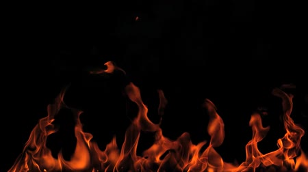 canal : Fire flames on a black background Stock Footage
