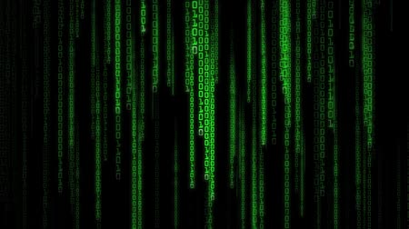 matris : High definition animated loop of green binary streams falling over a dark background. Matrix binary rain style. Stok Video