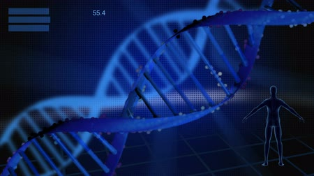 genética : Digital motion graphic of a DNA strand and virtual anatomy
