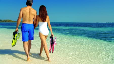 casal heterossexual : Caucasian couple in swimwear with snorkeling equipment on tropical island  Stock Footage