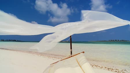 rejtekhely : Hammock swaying lazily on a remote beach inviting relaxation