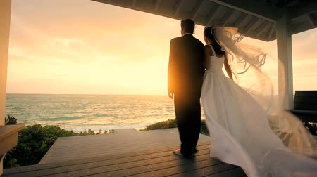 casal heterossexual : Happy couple in wedding clothes watching the sunset after their island ceremony