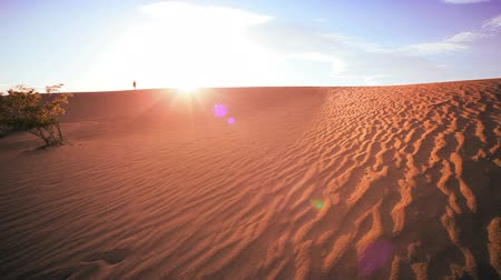 дюна : Distant figure of a lone female hiking across sand in a desert environment Стоковые видеозаписи