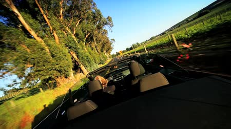 vinho : Touring vacation of the wine region of Napa Valley in a luxury convertible