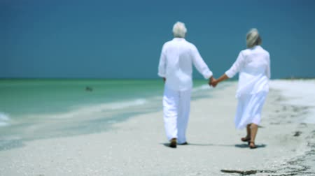 planos : Senior couple walking into the future with confidence Stock Footage