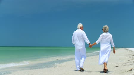 senior lifestyle : Senior couple walking into the future with confidence 60FPS Stock Footage