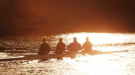 sport : Oarsmen in training on the water at sunrise, seen in silhouette Stock Footage