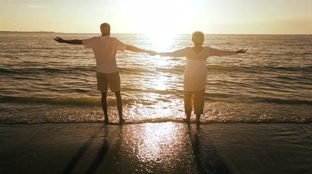 lelkesedés : Healthy retired couple celebrating their future carefree lifestyle on a beach at sunset