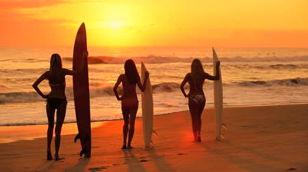 prancha de surfe : Three beautiful slim girls modeling with surfboards on the beach at sunrise