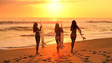 prancha de surfe : Three young females with surfboards running down to the waves at sunrise