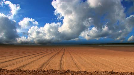 commercial cultivation : Dramatic time-lapse clouds over a ploughed field