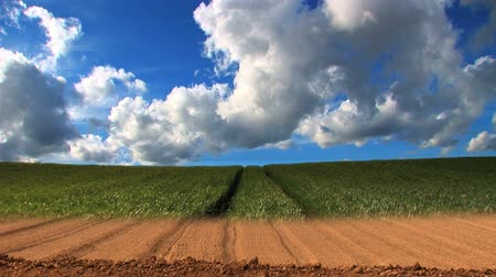 season : Dramatic time-lapse of clouds & crops growing in a field