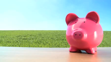 svině : Concept shot of money pig for green investment in an environmental future