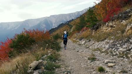 trilha : female runner with nordic walking poles and backpack running mountain marathon