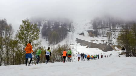 kilometer : Rosa Khutor, Russia - May 4, 2017: large group runners skyrunners running snowy mountains trail in race Vertical kilometer