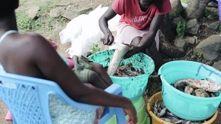 poorness : KISUMU,KENYA - MAY 16, 2018: Man and woman cleaning raw fish together. Family in Africa preparing dinner using knife.