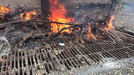 galon : Dry twigs burnt with flame to make charcoal. Affecting the environment Causing global warming