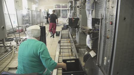 mecânica : Workers at factory for production and packaging of dairy products.