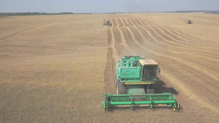 Harvesting grain with a few combines, in a large field.