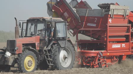 Tractor trailed harvester rides on a dusty field and collecting potatoes.