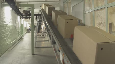 anyagi : Moving conveyor belt with cardboard boxes along corridor in workplace.