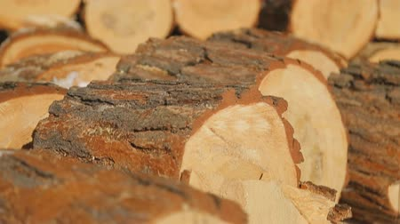 tartak : Close up view of sawn timber on sawmill. Wideo