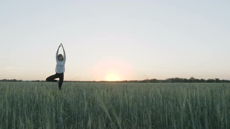 esneme : Yoga vrikshasana tree pose by woman in field