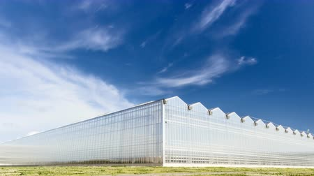 kertészeti : Timelapse of Clouds Moving Ower Greenhouse. Corner View