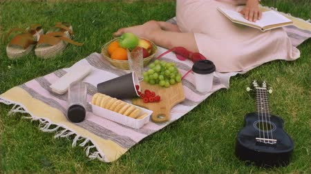 Top view of picnic with fruit and ukulele