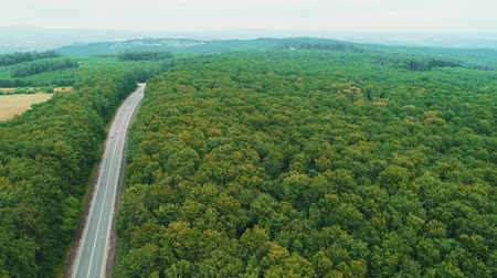 Aerial view of cars moving along the road between green field. 4K seamless transition from woods into road and field.