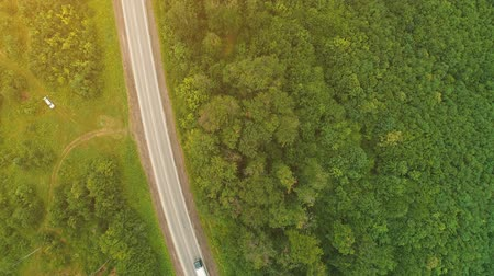 motorová nafta : Fly over drone view. One white truck is driving along the freeway amidst a dense forest in the mountains. 4K.