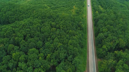 asphalt road : Aerial view of white lorry driving on country road in forest. 4K. Stock Footage