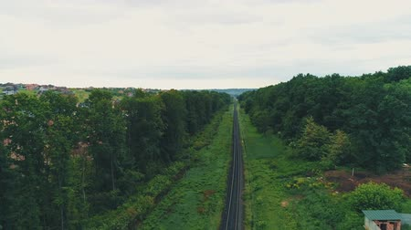 Aerial view, moving up, keeps in focus railtrack and shows marvellous countryside area, on green forest background.