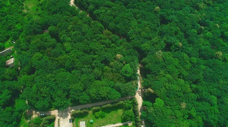 sűrű : Aerial view of houses enclosed by dirt roads and forest. 4K.