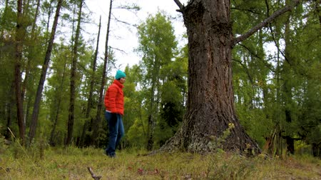 enxofre : Female tourist walks through the forest and disappears behind a tree Stock Footage