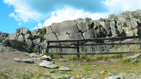 grawerowanie : Ancient petroglyphs found on the site Kalbak-Tash in the Altai Mountains, Siberia, Russia. Panorama.