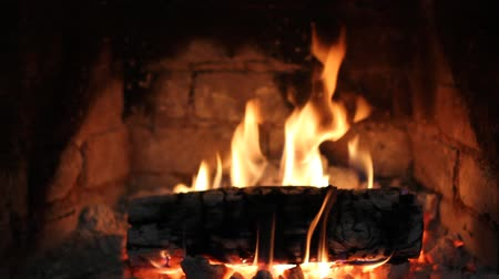 The fire burns in the fireplace