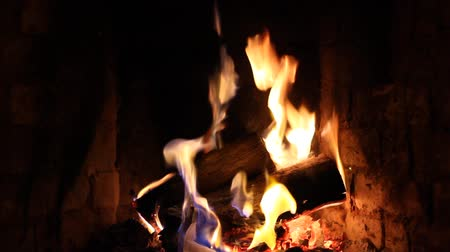 Fire in the fireplace. Fire close up. Stock Footage