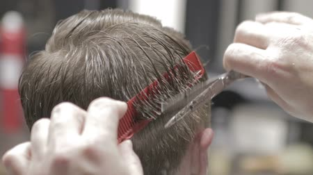 Professional barber styling hair of his client close-up view Wideo