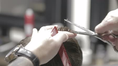 Professional barber styling hair of his client with scissors
