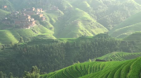 dazhai : Timelapse of rice terraces in China. Stock Footage