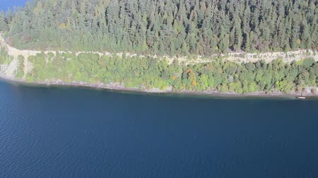 ostrovy : Low-flying airplane perspective of evergreen trees on tall peninsula