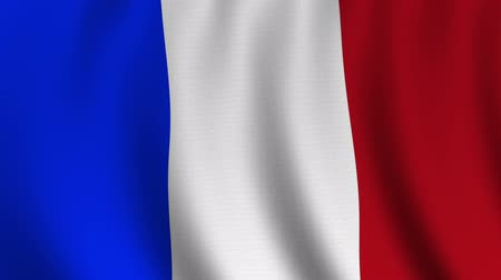 francês : French flag: The flag of France waving