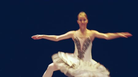 bale : classical ballet - ballerina dancing on the stage