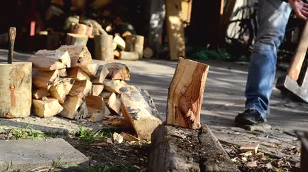 lenha : Man chopping wood logs with ax. Making firewood stack or staple of biomass.