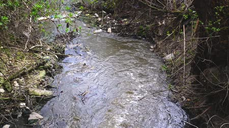 загрязнение : Water pollution. Waste water flowing and polluting environment.