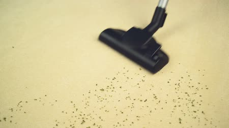 halı : Vacuum Cleaner sweeping Brand New Carpet. Housework and home hygiene. 1920x0180 full hd footage.