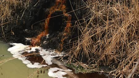 sujo : River Water Pollution And Contamination from Chemical Industry Factory Sewage, Steady 1920x1080 full hd footage.
