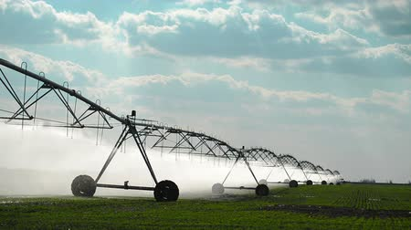 irrigação : Automated Farming Irrigation Sprinklers System in Operation on Cultivated Agricultural Field, 1920x1080 full HD footage. Vídeos