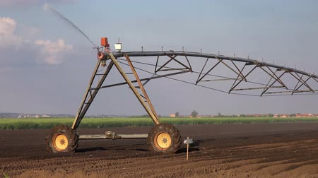 cultivar : Agricultural Irrigation Sprinklers Irrigating Cultivated Farming Field Land Soil on a Bright Sunny Day to Assist in Growing of Agricultural Crops.